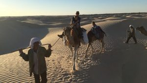 Camel Trekking Tours in Tunisia