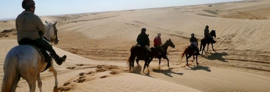 Horse Riding Holidays in Tunisia
