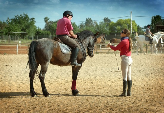 training for horse riding